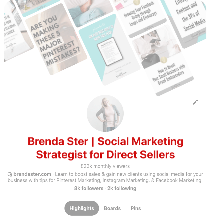 Pinterest Screenshot - How to Write the Perfect Pinterest Profile - Branded Name