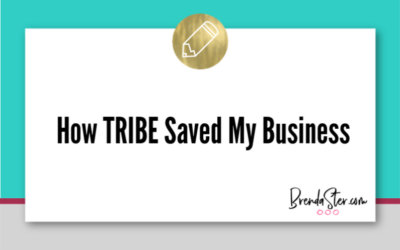 How Stu McLaren's TRIBE Saved My Business